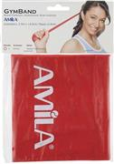 Amila 48187 Gym Band 2,5m Medium