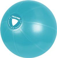 Live Pro Gym Ball 55cm Blue