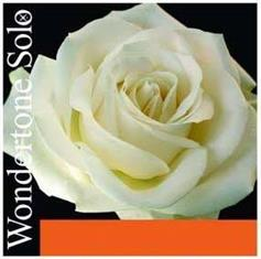 Pirastro Wondertone Ε (Ball) Βιολιού (Silvery Steel)