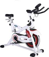 Viking V-2000 Spin Bike