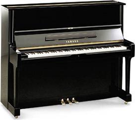 Όρθια Πιάνα